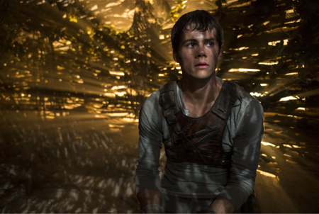 Still-of-Thomas-the-maze-runner-film-37212483-578-389