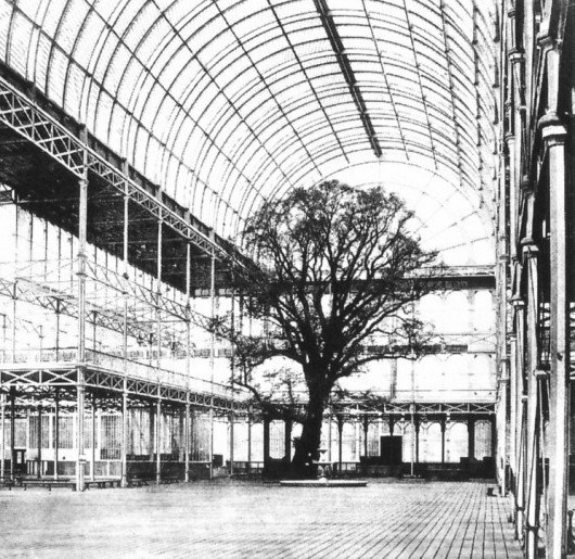 55418fc3e58ece706c000342_the-architectural-lab-a-history-of-world-expos-_crystal_palace_great_exhibition_tree_1851-530x515