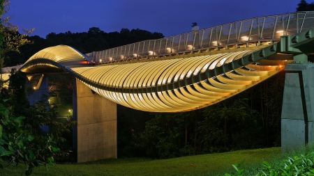 Henderson-Waves-Bridge-Landscpae