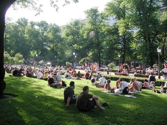 park-in-helsi_cepolinacom