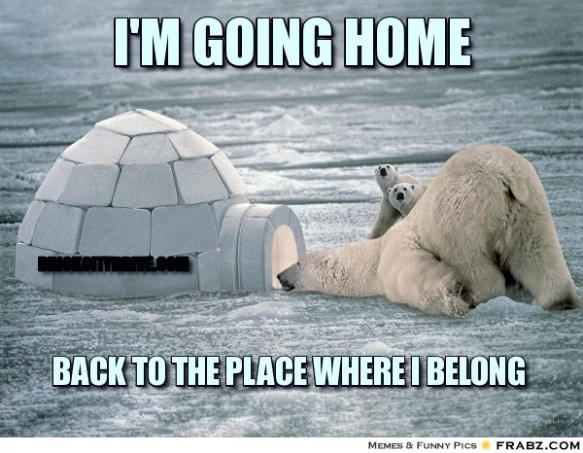 frabz-im-going-home-back-to-the-place-where-i-belong-brickcitydrivecom-9d8252