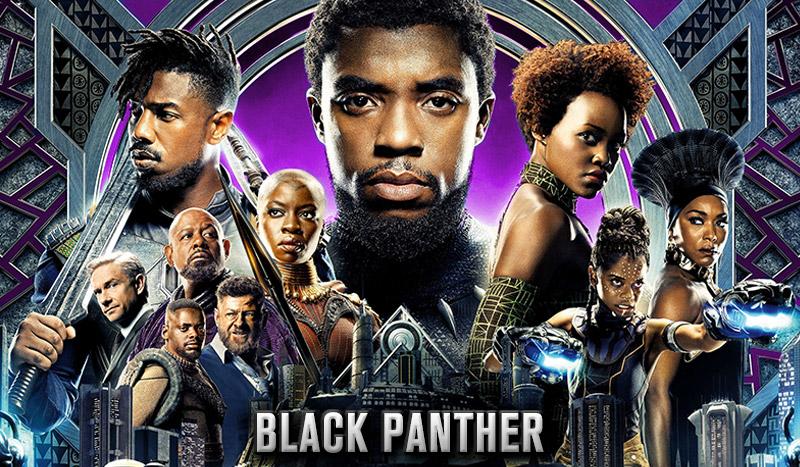 personajes de la pantera negra ile ilgili görsel sonucu