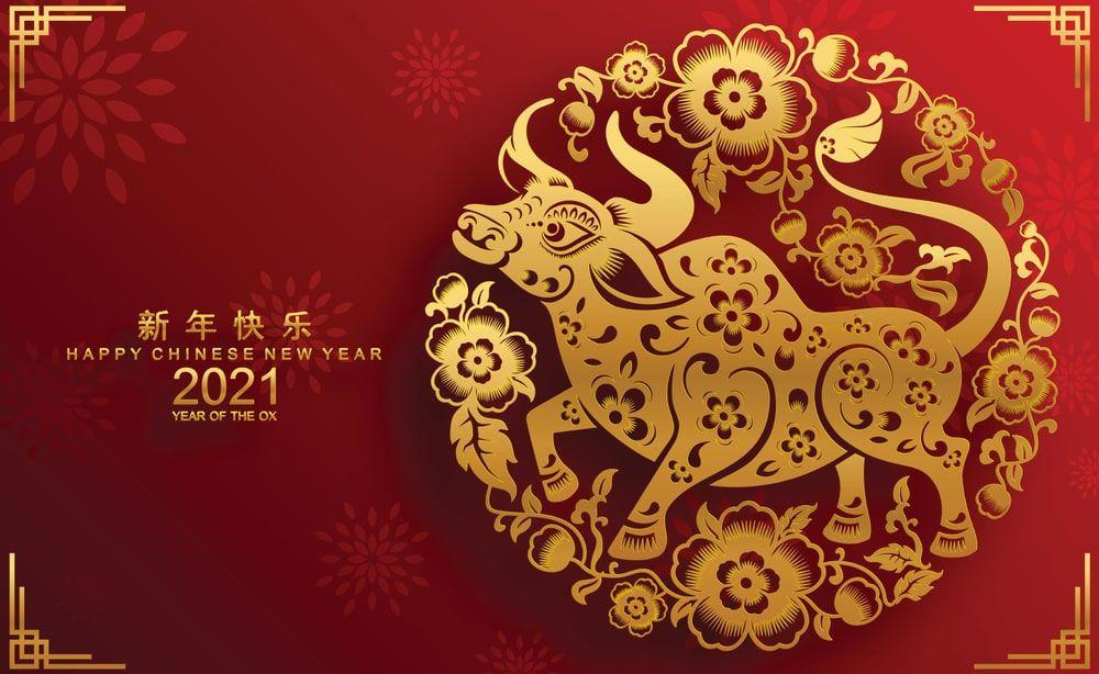Xi Vincent Loy S Online Journal